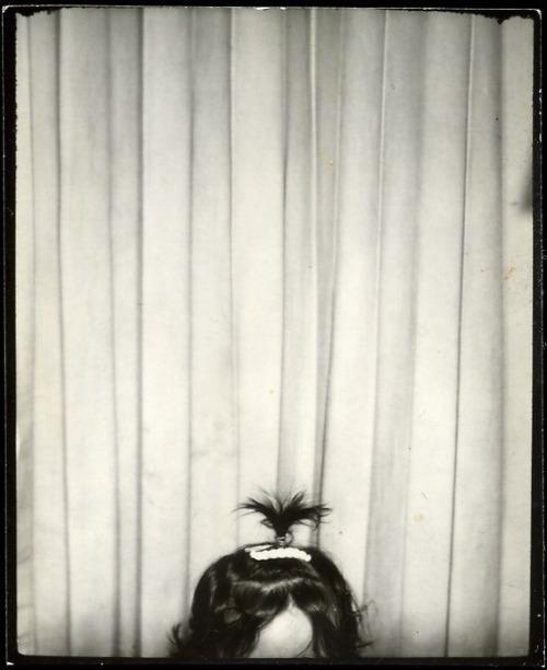 3. Les palmiers